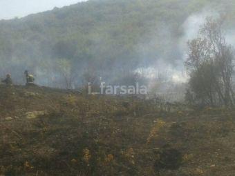 Πυρκαγιά κοντά στον Παλαιόμυλο Φαρσάλων