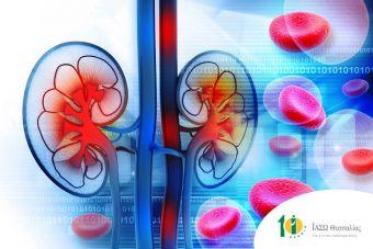 Σε επιτυχή μεταμόσχευση νεφρού υπεβλήθη 65χρονη ασθενής του ΙΑΣΩ Θεσσαλίας