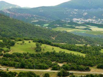 """""""Εξαγορά δασικών εκτάσεων και επιδοτήσεις ΟΣΔΕ - Όλη η αλήθεια σε αβέβαιο μέλλον"""""""