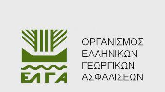 Αποζημιώσεις ύψους 2 εκατ. ευρώ πληρώνει την Παρασκευή (20/11) ο ΕΛΓΑ