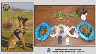 """Έβγαλε """"λαβράκι"""" πάλι ο αστυνομικός σκύλος στα Τρίκαλα!"""