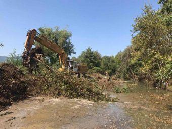 Έγκριση κοπής εκατοντάδων δέντρων για τον καθαρισμό ποταμών στην Π.Ε. Καρδίτσας