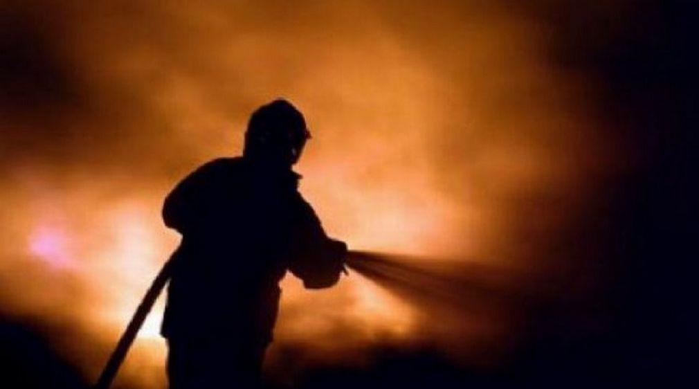Κεραυνός έκαψε 60 ζώα τα ξημερώματα σε κτηνοτροφική μονάδα στα Τρίκαλα